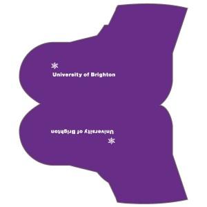 University of Brighton Overshoes